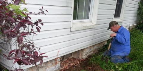 Pest Control Tips From Bethel's Expert Exterminators, Tate, Ohio