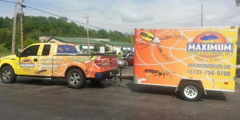 Pest Control Experts Answer Four FAQs About Bed Bugs, Tate, Ohio