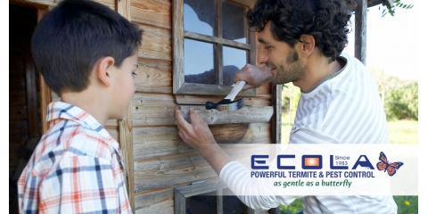 ECOLA Offers Natural Termite Control, San Fernando Valley, California