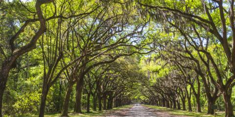 5 Tips for Planning an Outdoor Funeral Service, McDonough, Georgia