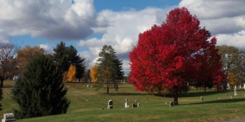 The Benefits of Choosing Cremation Services, Rochester, New York