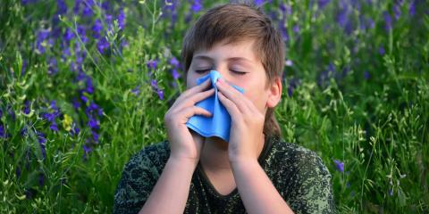 Suffering From Allergies? 3 Reasons to See an Allergy Specialist , Queens, New York