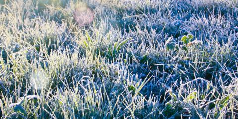 3 Winter Lawn Maintenance Tips to Know, Saltillo, Nebraska