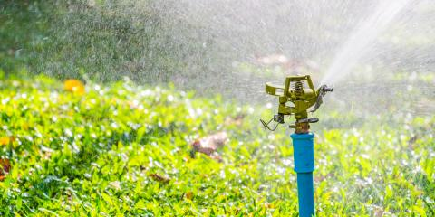 3 Common Symptoms of Lawn Overwatering, Saltillo, Nebraska