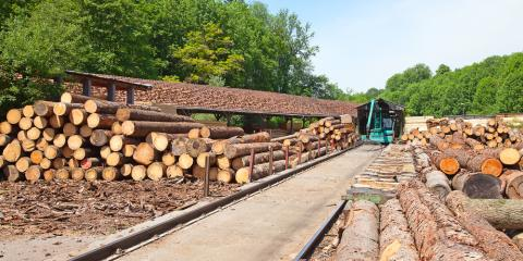 Manufacturing & Logging Hardwood Lumber: Key Processes & Equipment, Middlefield, Ohio