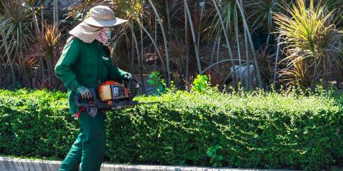 5 Tips for Trimming Hedges, Middlefield, Ohio
