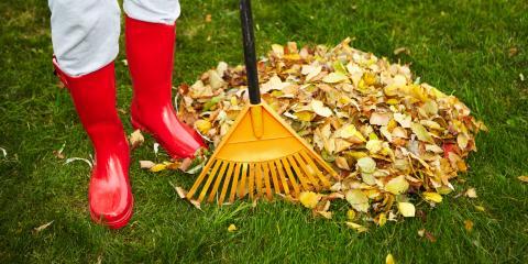 5 Useful Tips for Preparing Your Lawn for Winter, Cincinnati, Ohio