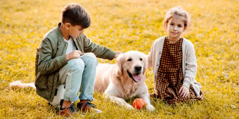 Keep Your Animals Healthy This Fall With These Pet Care Tips, Miami, Ohio