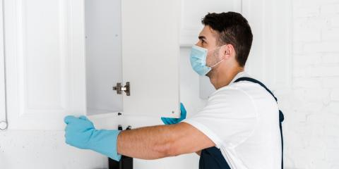 A Guide to Heat Thermal Pest Control, San Diego, California
