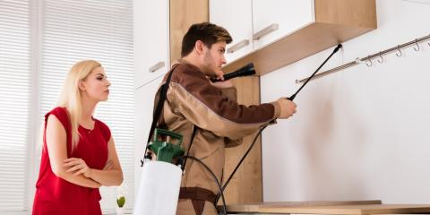 Is pest control service needed in the Fall and winter?, Mobile, Alabama