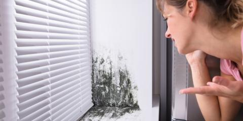 Does the color of Mold matter?, Omaha, Nebraska