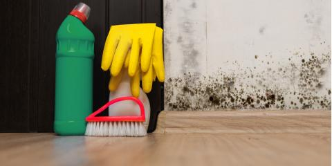 Mold Damage Experts Share Top 3 Ways to Prevent Mold From Popping Up In Your Home, Evergreen, Montana
