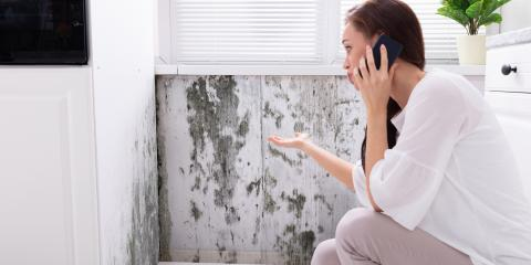 What to Do If Your Rental Property Has Mold, Russellville, Arkansas