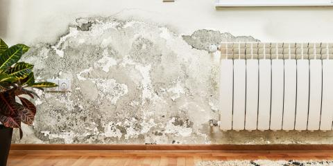 3 Common Causes of Household Mold, Troy, Missouri