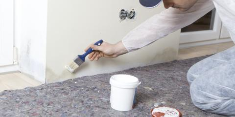 FAQ About Mold Remediation, Rochester, Minnesota