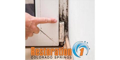 FREE MOLD INSPECTIONS, Colorado Springs, Colorado