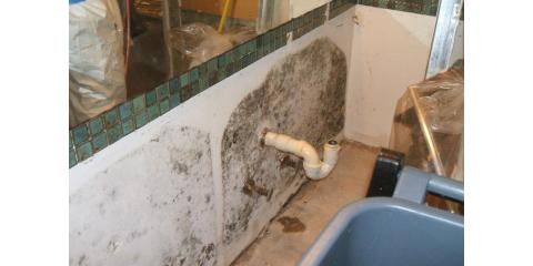 If you have mold, we can help! 573-443-8383, Columbia, Missouri