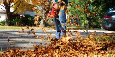 5 Essential Leaf Blower Maintenance Tasks, Monroe, Connecticut