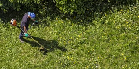 4 Tips for Choosing a Grass Trimmer, Monroe, Connecticut
