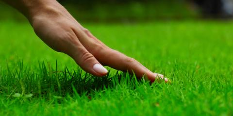 Lawn Irrigation: 3 Excellent Benefits, Pittsford, New York