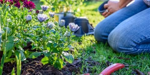 3 Benefits of Gardening With Mulch, Moscow Mills, Missouri