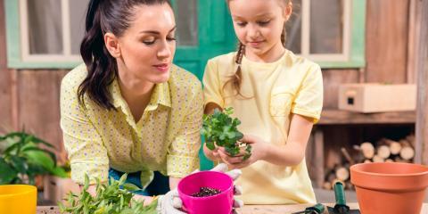 3 Surprising Health Benefits of Gardening, Moscow Mills, Missouri