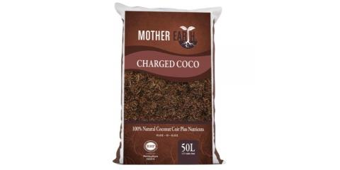 Wholesale Priced Mother Earth Charged Coco!, Pueblo, Colorado