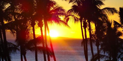 4 Savvy Tips for Moving Your Stuff to Hawaii, Honolulu, Hawaii