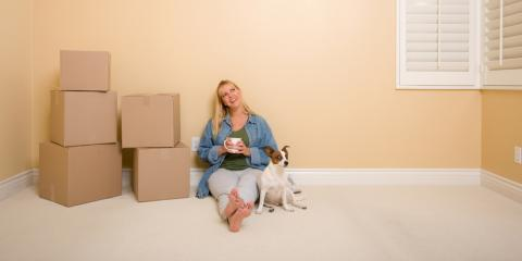 How to Make Moving Easier on Your Pets, Lincoln, Nebraska