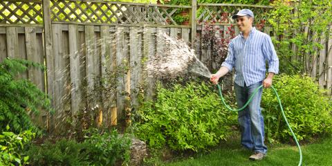 Lush Green Lawns: 5 Easy Yard Maintenance Tips on When to Water, Stuarts Draft, Virginia