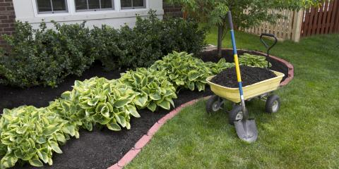 3 Reasons Why Lawns Need Mulch, Danley, Arkansas