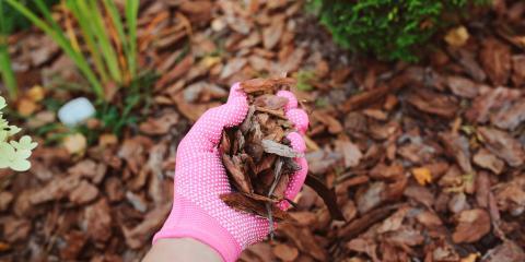 3 Tips for Mulching Properly, Hamilton, Ohio