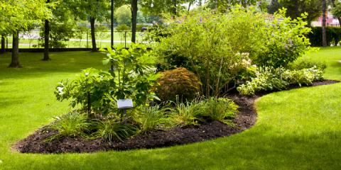 Do's and Don'ts for Using Mulches With Your Landscaping, Lexington-Fayette, Kentucky