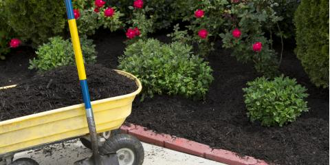 Why You Should Mulch Your Yard, Hamilton, Ohio