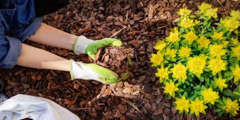 5 FAQ About Mulch, Franklin, Ohio