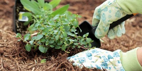 Beautify Your Yard by Mulching This Spring, Cromwell, Connecticut