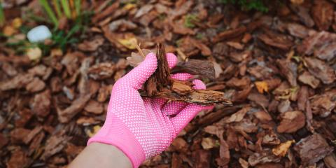 5 Myths About Mulch, Nicholasville, Kentucky