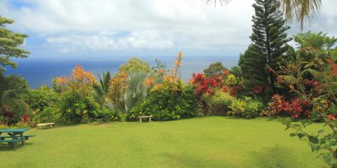 3 Reasons Your Landscaper Should Have Experience With Native Hawaiian Plants, Koolaupoko, Hawaii