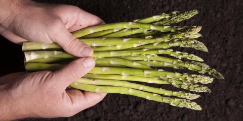 A Natural Medicine Expert Explains Prebiotics, Anchorage, Alaska