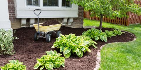 Garden Maintenance: 3 Things You Should Know for Healthy Plants, Asheboro, North Carolina