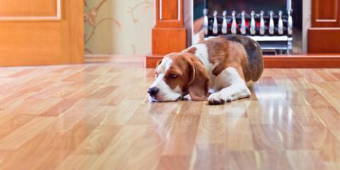 Can Your Hardwood Floors Be Refinished?, Winston, North Carolina