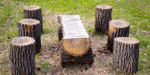 5 Creative Ways to Repurpose a Tree Stump After Grinding, Abbotts Creek, North Carolina