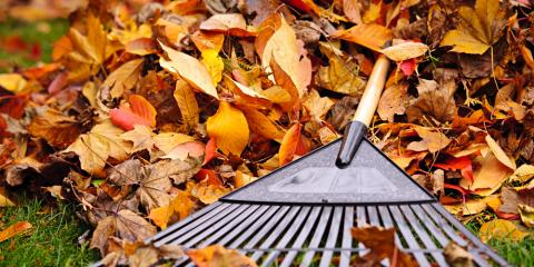 3 Lawn Care Tips to Keep in Mind This Fall, Lincoln, Nebraska