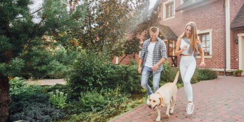 4 FAQ Dog Owners Have About Homeowners Insurance, Saltillo, Nebraska