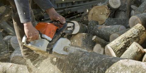 3 Reasons You Should Never Attempt a DIY Tree Removal, North Huntingdon, Pennsylvania