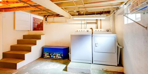 A Guide to Basement Pest Prevention, New Braunfels, Texas