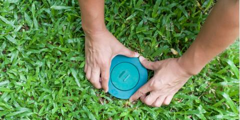 3 Ways to Prevent Termites, New Braunfels, Texas