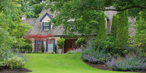 3 Benefits of Adding Trees to Your Landscape Design, Seymour, Connecticut