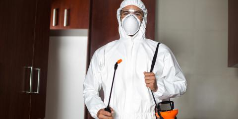 4 Signs You Should Hire a Pest Control Professional, North Haven, Connecticut