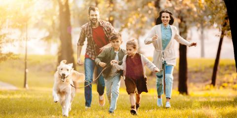 How Your Pets Can Impact Your Homeowners Insurance Policy, New Vienna, Iowa